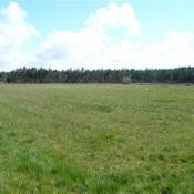 Terrain 854 m² Hourtin (33990)