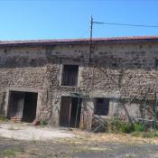 vente Maison / Villa 1 pièce Sauviat