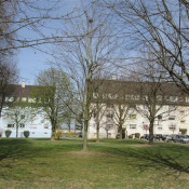 vente Appartement 3 pièces Benfeld
