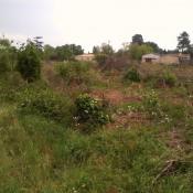 Terrain 800 m² Saint-Selve (33650)