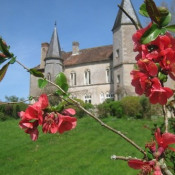 Autun, Château 17 pièces, 480 m2