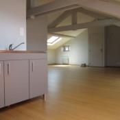 Andrézieux Bouthéon, Appartement 2 pièces, 45 m2