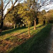 Domaine de la restanque - Montélimar