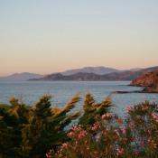 Fiore di mare - Monticello