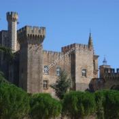 Avignon, Château 25 pièces, 1000 m2