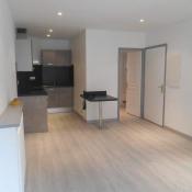 location Appartement 2 pièces Saint-Laurent-du-Pont