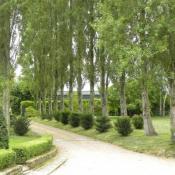 vente Maison / Villa 9 pièces Dinard