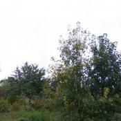 Terrain 400 m² Villecresnes (94440)