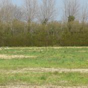 Terrain 500 m² Bellengreville (76630)