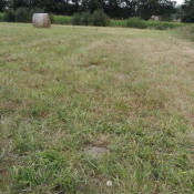Terrain 1700 m² Serres-Gaston (40700)