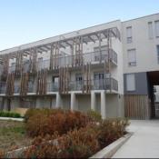 location Appartement 1 pièce Saint Luce sur Loire
