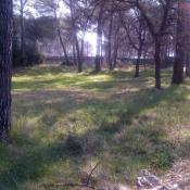 Terrain 2600 m² Mouans-Sartoux (06370)