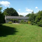 Vente maison / villa Pluvigner 454140€ - Photo 1