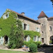 Port sur Saône, Замок 10 комнаты, 450 m2