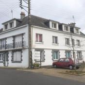 vente Maison / Villa 9 pièces Langonnet