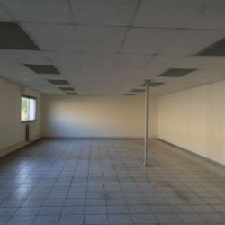 Vente Local d'activités Esvres 550 m²