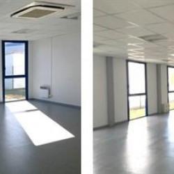 Location Bureau Castelnau-d'Estrétefonds 400 m²