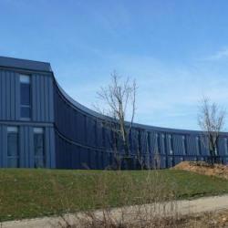 Location Bureau Didenheim 165 m²