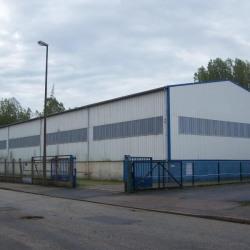 Location Local d'activités Rogerville 1340 m²