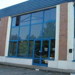 Location Bureau Croissy-Beaubourg 228 m²