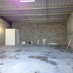 Vente Local d'activités Cadaujac 290 m²