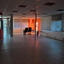 Vente Local d'activités Bailly-Romainvilliers 5200 m²
