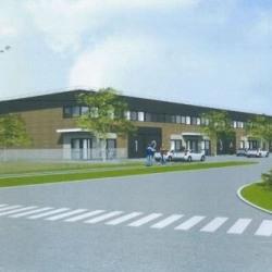 Location Local d'activités / Entrepôt Saint-Louis