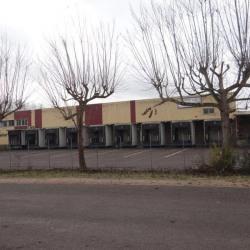 Vente Entrepôt Châtenoy-le-Royal 6300 m²