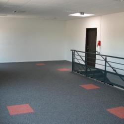Location Bureau Vaulx-Milieu 117 m²