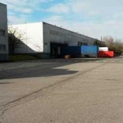 Location Entrepôt Marly-la-Ville 21942 m²