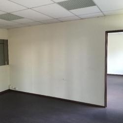 Location Local d'activités Moissy-Cramayel 300 m²
