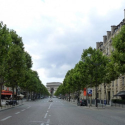 Location Local commercial Paris 8ème 140 m²