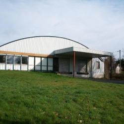 Vente Local d'activités Grenay 1600 m²