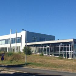 Location Local d'activités Cesson-Sévigné 2000 m²