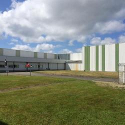 Vente Terrain Brest 69024 m²