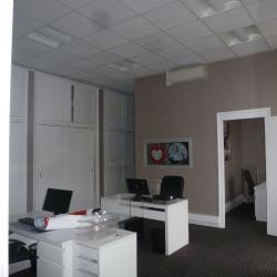 Location Bureau Lyon 2ème 100 m²