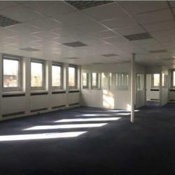 Location Bureau Marly-le-Roi 332 m²