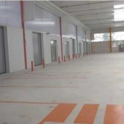 Location Local d'activités Palaiseau 1171 m²