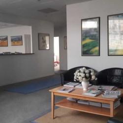 Location Bureau Évry 250 m²