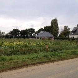 Vente Terrain Saint-Alban 600 m²