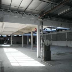 Location Local d'activités Villenoy 3407 m²