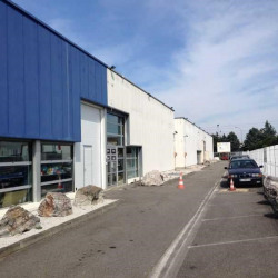 Location Local d'activités Aucamville 386 m²