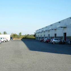 Location Local d'activités Carbonne 250 m²