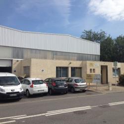 Location Local d'activités Portet-sur-Garonne 334,65 m²