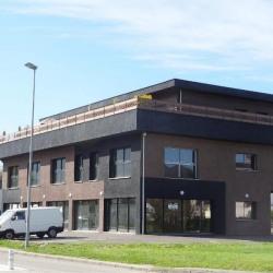 Vente Bureau Drumettaz-Clarafond 368 m²