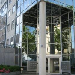 Location Bureau Lyon 8ème 125 m²