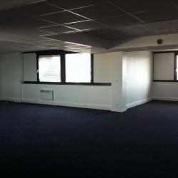 Location Bureau Saint-Quentin-Fallavier 616 m²