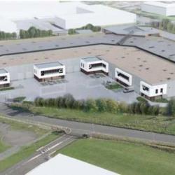 Location Local d'activités Sequedin 1684 m²