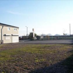 Location Bureau Octeville-sur-Mer 400 m²