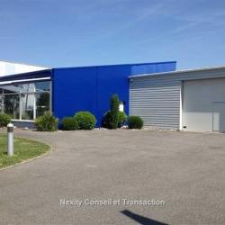 Location Local d'activités Toulouse 278 m²